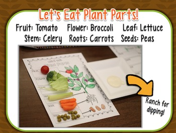 Interactive Notebook and Science Activities {Plants and Flowers} {CCSS}