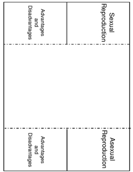 Interactive Notebooks Genetics
