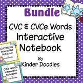 Interactive Notebooks ~ Literacy Bundle