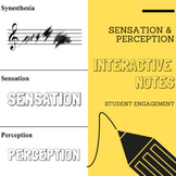 Interactive Notes | Sensation & Perception