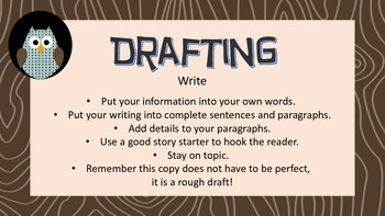Interactive Owl Themed Writing Process Bulletin Board Set