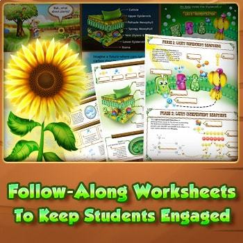 Photosynthesis Interactive Activity & Guided Worksheets
