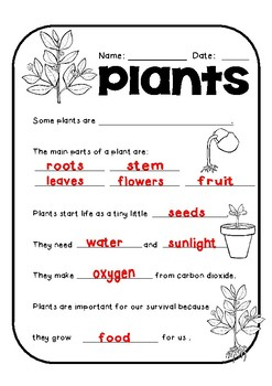 Interactive Plant Lapbook