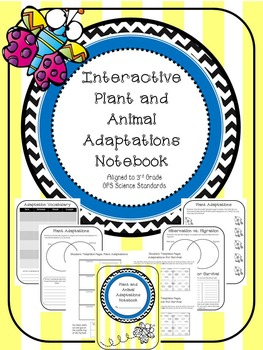 Interactive Plant and Animal Adaptation Notebook