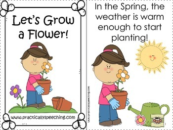 Interactive Planting a Seed Book with Manipulatives