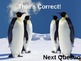 Interactive Powerpoint about Penguins
