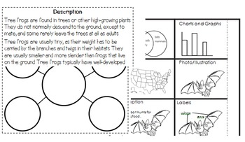 Interactive Reading Notebook: Informational Text Standard 5 w/ 3 & 7
