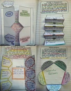 Reading Interactive Notebook: Informational Text Activities