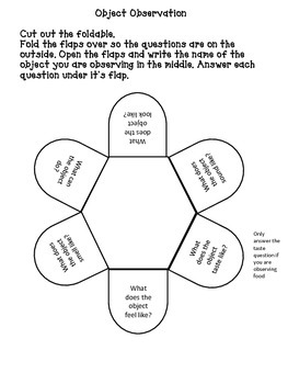 Interactive Science Notebook Activities Grades 1-3 What Is A Scientist?