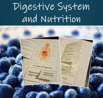 Interactive Science Notebook - Human Organ System (Digestive System & Nutrition)