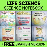 Life Science Interactive Notebook Activities