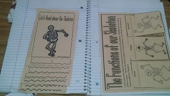 Skeleton and Interactive Notebook