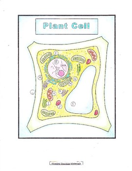 Cells: Interactive Science Notebook for Plant & Animal Cells