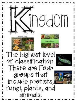 Interactive Science Vocab: Chapter 3 Classifying Organisms