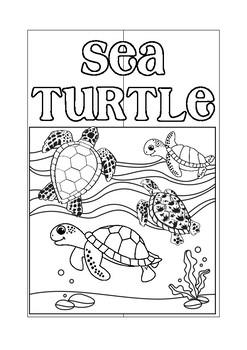 Interactive Sea Turtle Lapbook