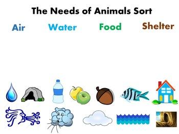 Interactive Sort: Needs of Animals