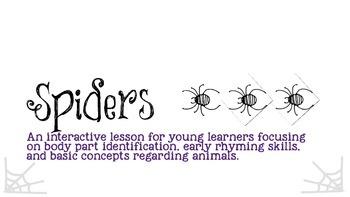 Interactive Spider Activities