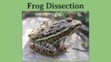 Interactive Virtual Frog Dissection, with video