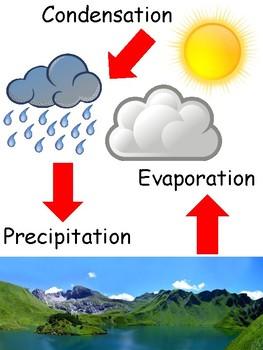 Interactive Water Cycle Anchor Chart