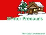 Interactive Winter Pronouns
