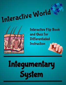 The Integumentary System Interactive Flip Book and Quiz