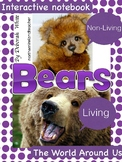 Interactive notebook on BEARS - Living and non-living.  Re