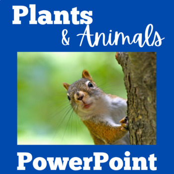 Plants and Animals PowerPoint | Animals and Plants Interdependency