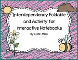 Interdependency Foldable and Activity for Interactive Notebooks