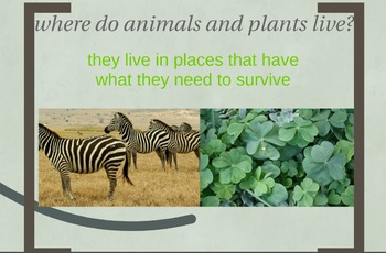 Interdependent Relationships in Ecosystems: Animals and plants