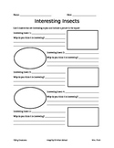 Interesting Insects Worksheet