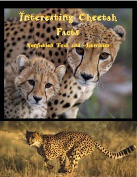 Interesting facts about Cheetahs!