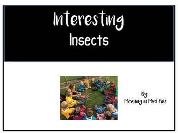 Interesting insects By: Meaning in Mud Pies