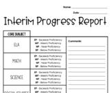 Interim Progress Report (template)