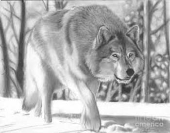 The Interlopers:  Scavenger Hunt for Information