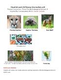 Intermediate Art unit- Three Florida endangered animals