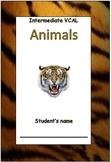 Intermediate Literacy Booklet
