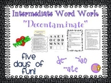 """Word Work and Vocabulary 5-Day Intermediate Unit """"DECONTAMINATED"""""""