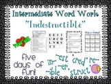 "Word Work and Vocabulary 5-Day Intermediate Unit ""INDESTRUCTIBLE"""
