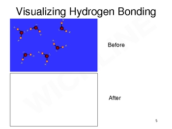 Intermolecular Force Overview
