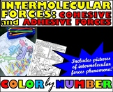 Intermolecular Forces - Color By Number