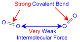 Intermolecular Forces Inquiry