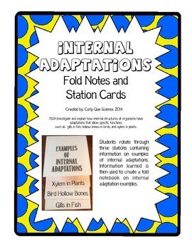 Internal Adaptations