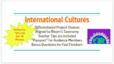 International Cultures Differentiated Project Board