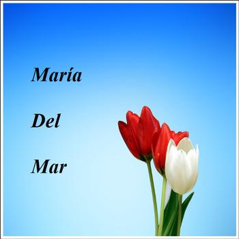 Int'l Day for Elimination of Violence against Women Bundle /Spanish