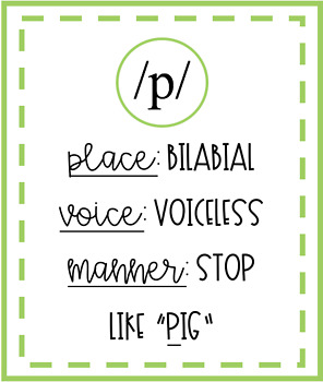 International Phonetic Alphabet (IPA) Flashcards by The Social Speechie