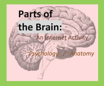 Internet Activity, Parts of the Brain Intro, Psychology, 3D Anatomy,  Worksheet