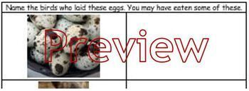Cooking, ESL: Internet Egg hunt