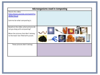 Internet Scavenger Hunt: Microorganisms
