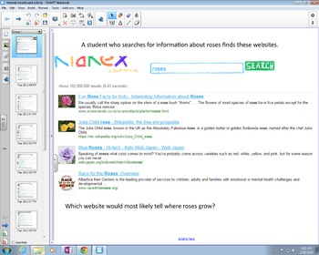 Internet Search SmartBoard Activity