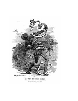 Interpreting Political Cartoons Graphic Organizer: Imperialism